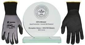 ISHN-ACW-Award2015-v2