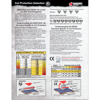 MCR-Cut-Protection-Selection