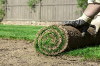 A Lesson on Landscaping, Landscapers, and Yardwork Safety Hazards