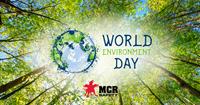 Explaining Green, Eco-Friendly, and Environmentally Friendly