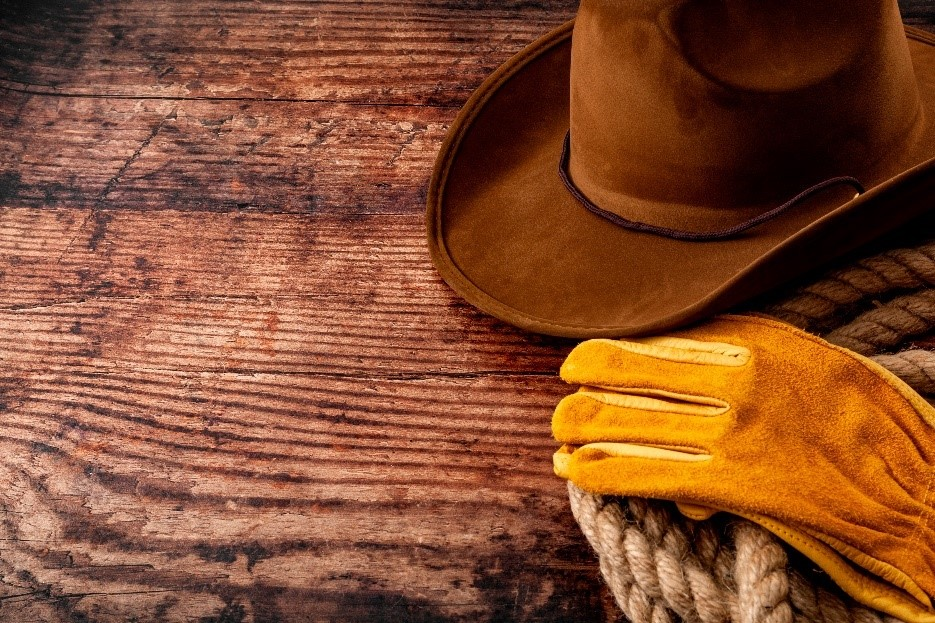 Cowboy Hat Rope and Gloves