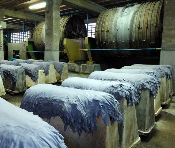 Dyeing Hides
